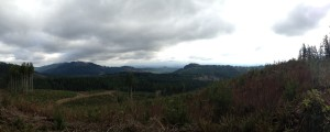 Panorama view from the summit of Little Larch Mtn.
