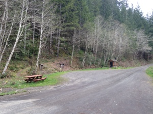 Trailhead from the road.